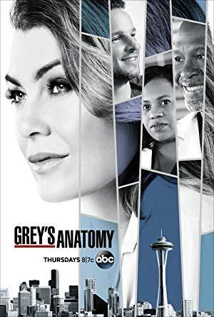 Grey's Anatomy  - MV5BMTY5OTNjNTctMWYxNC00YjE2LWEzMTMtMTIzMzQ1MzhkODRhXkEyXkFqcGdeQXVyMzAzNTY3MDM  - Romance (seriály)